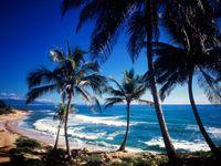 Dominican-republic-nature